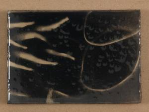 japanese fish II, 2013_spray/resin on paper_12x16