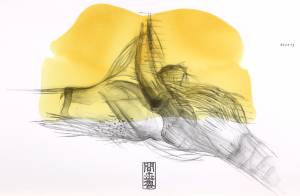 sinew II, 2013_graphite/collage on paper_70x100
