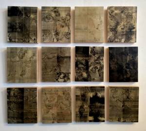 infections and shots, 2015_monotypes on wood and hunting pellets_22x27_(12 pieces)