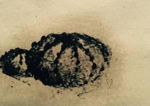 estònia I, 2015_charcoal on paper_30x20